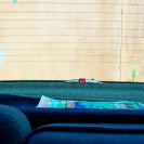 Парктроник Autrix F-368 в интерьере автомобиля
